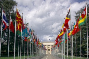 many national flags at un entry